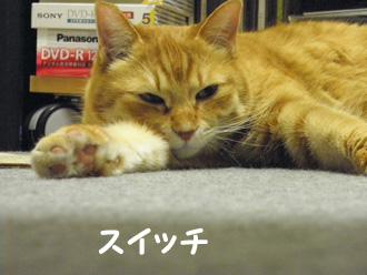 2011.1.10_2.jpg